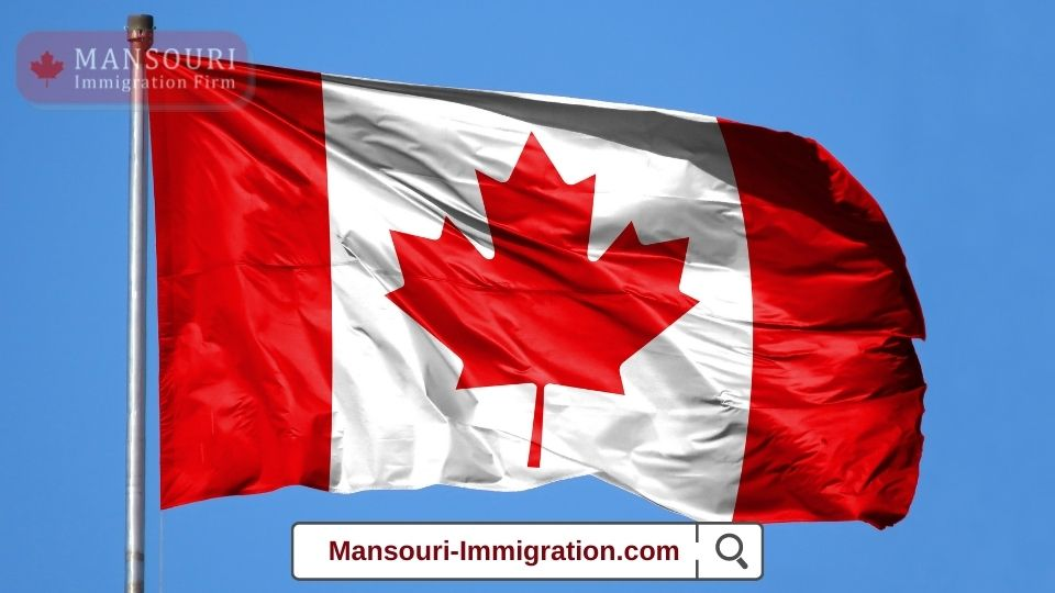 International Experience Canada candidates must make a decision.