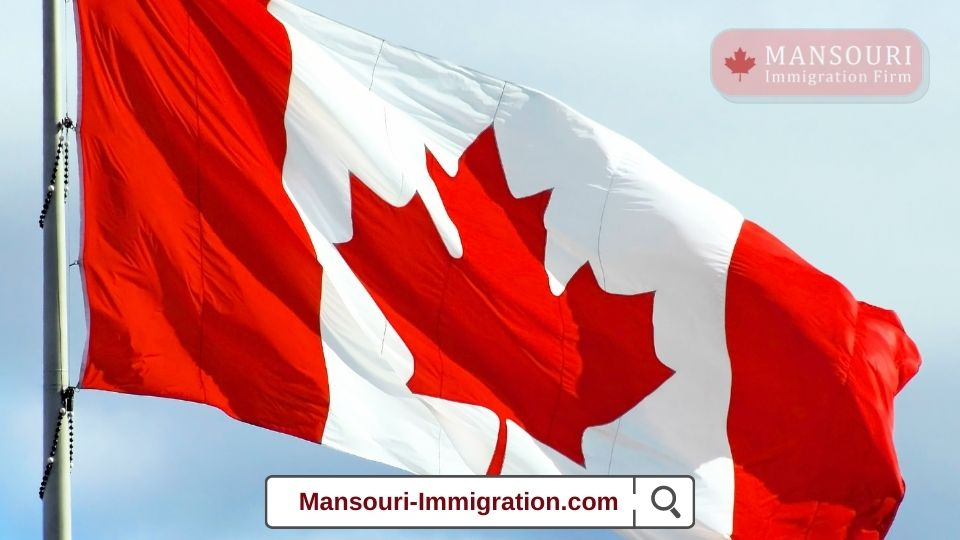 IRCC invited 667 candidates under the International Experience Canada