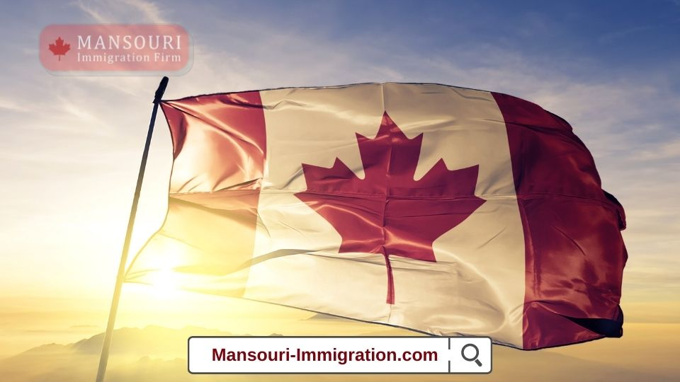 Canada issued 892 ITAs under the International Experience Canada