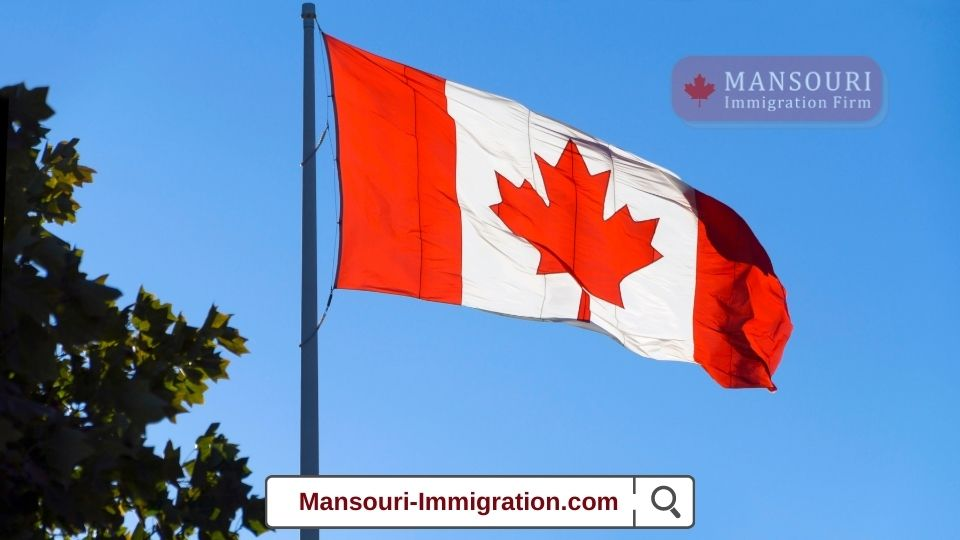 Canada invited 539 young foreigners under the International Experience Canada