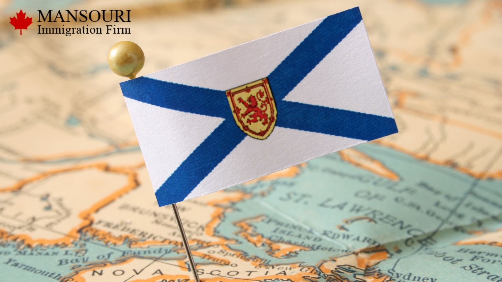 Nova Scotians want to see more newcomers in the province