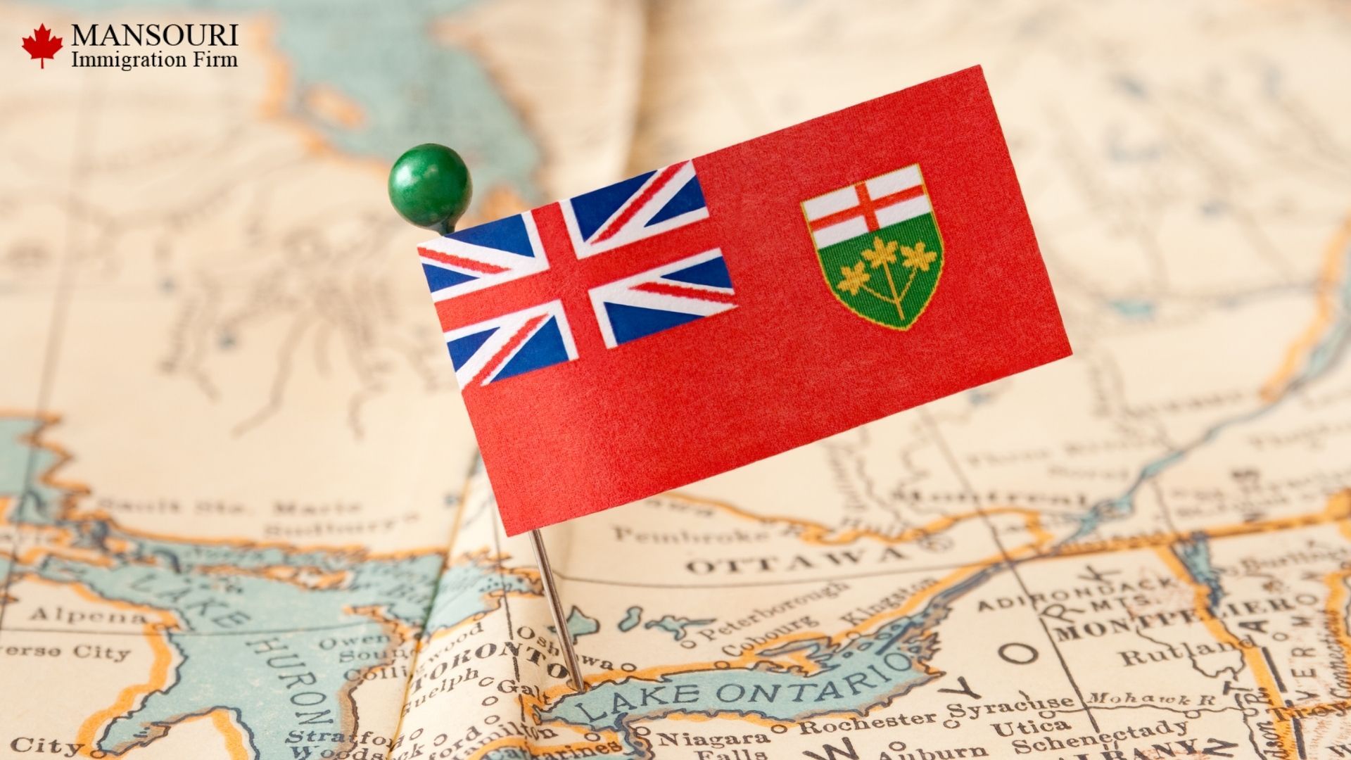 Ontario may lift language and license requirements for in-Canada immigrants